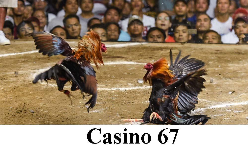 Casino 67