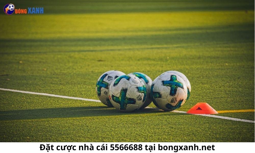 Đặt cược nhà cái 5566688 tại bongxanh.net