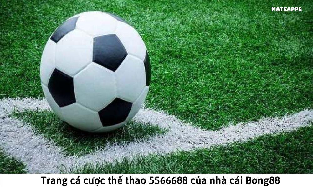 Trang cá cược thể thao 5566688 của nhà cái Bong88
